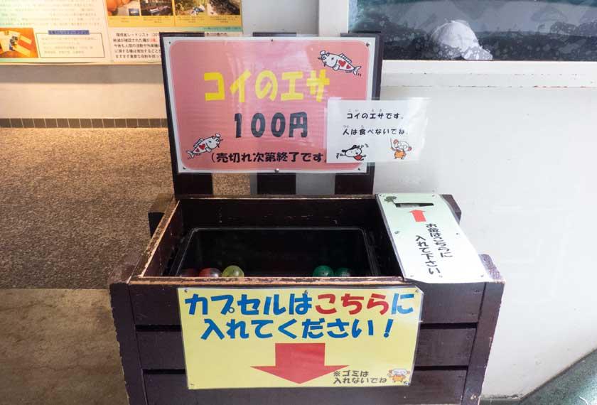 鯉のエサ販売BOX
