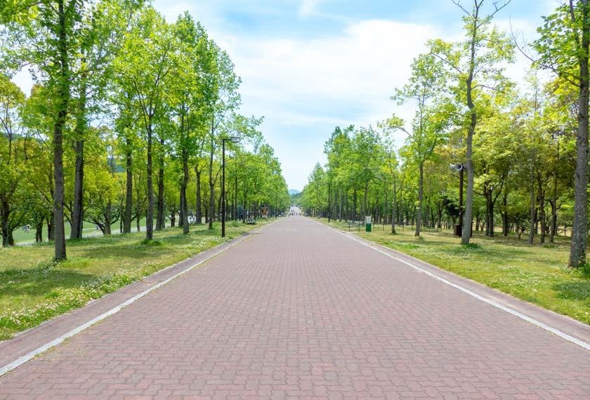 村内の広々とした通路
