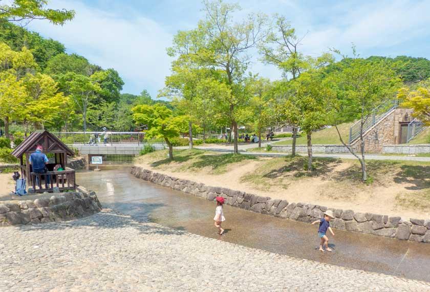 池へと続く浅い水場