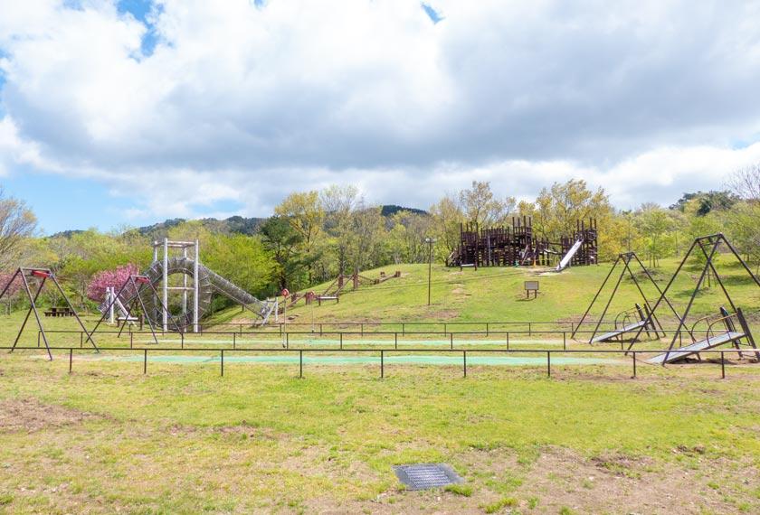神戸市立森林植物園のぼうけんの丘