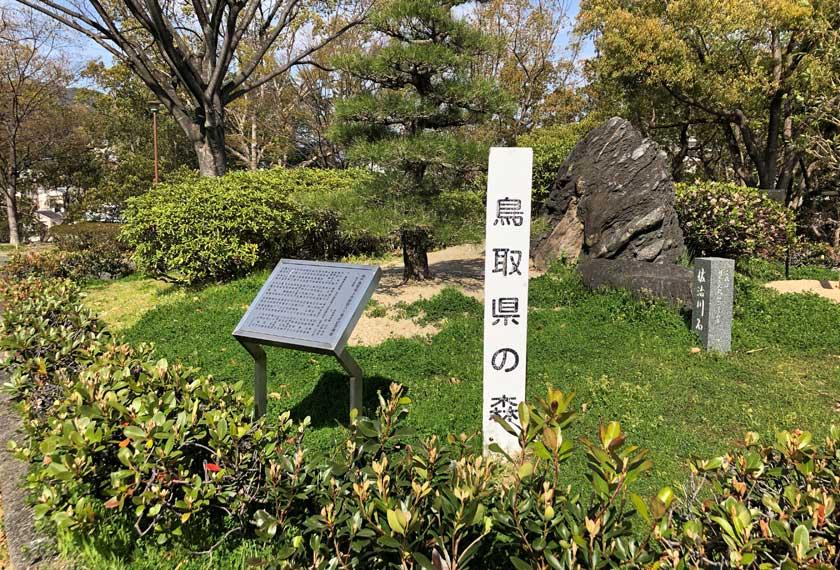 鳥取県の森