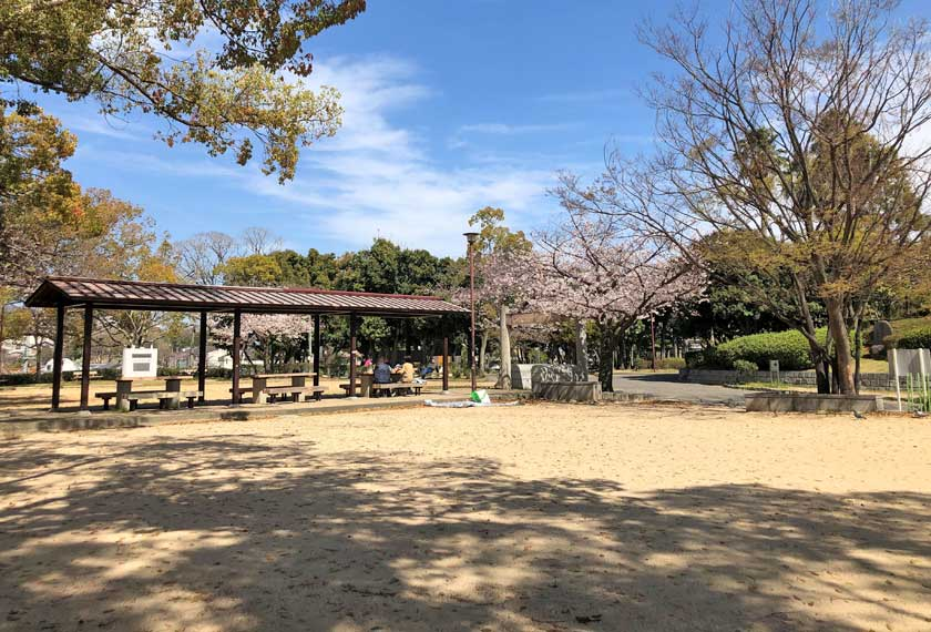 お花見もできる大倉山公園