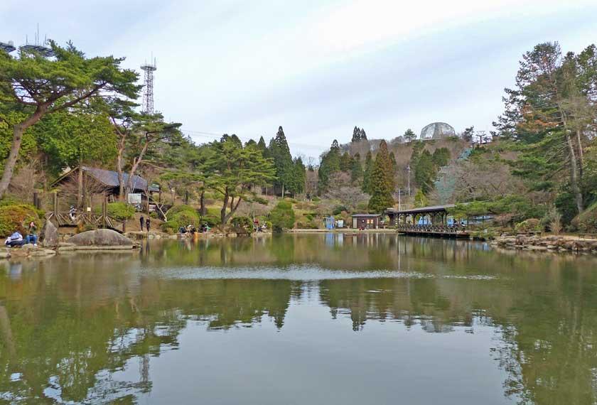 魚釣りができる池
