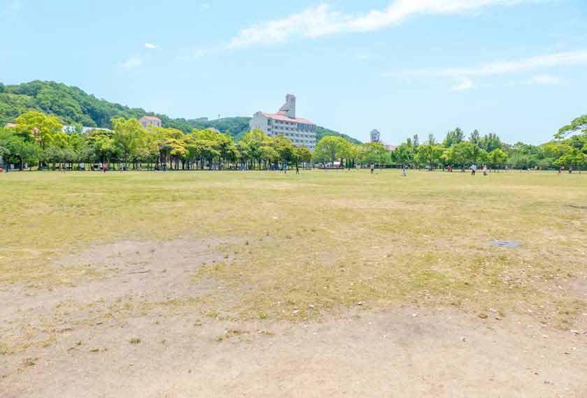 とても広い芝生広場