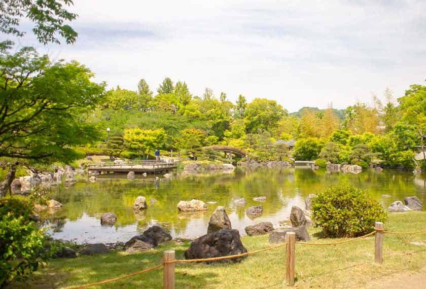 池と緑あふれる日本庭園
