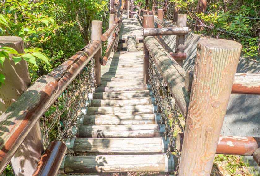 吊り橋アスレチック