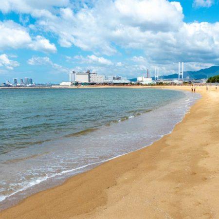 海の生き物が沢山!ビーチで水遊びが楽しめる「芦屋市総合公園」