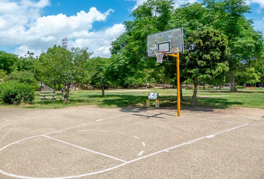 芝生広場のバスケットゴール