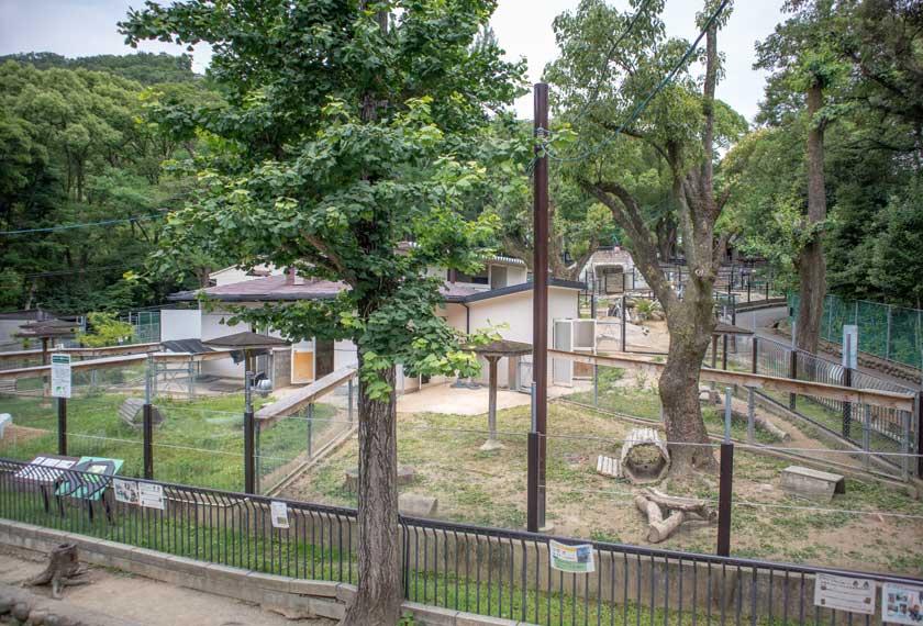 ウォンバットの飼育小屋